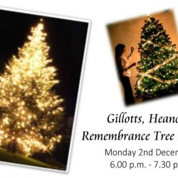 Christmas Memorial Tree launch